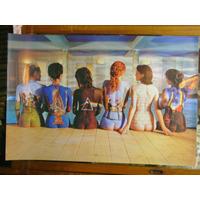 Poster Pink Floyd, Mujeres Desnudas Pintadas, 60 X 90.