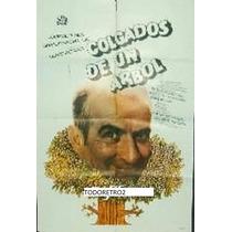 Afiche Colgados De Un Árbol Louis De Funès G Chaplin 1971