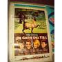 Cine Un Gato Del Fbi Walt Disney Afiche Original