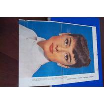 Audrey Hepburn-lámina