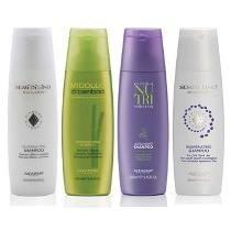 Shampoo Alfa Parf X 250ml Toda La Linea Alfaparf