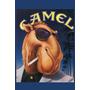 Carteles Antiguos De Chapa Gruesa 20x30cm Camel Moto Ci-147