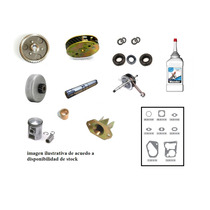 Kit Reparacion Motor Completo Zanella V3 Due Sol Fire Pocket