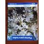Revista Plantas Para Todos Orquideas Jardin