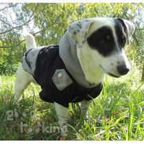 Buzos Para Perros!!! Good Looking!!!! Estampados-abrigados!!