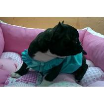 Musculosa + Vestido!!! Envío Gratis!!!