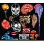 Coleccion Mas De 4000 Cliparts Vectorizados Tematicas Varias