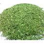 Moringa Oleifera Orgánica Produccion Familiar Por 1/2 Kg.