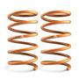 Espirales Ag Xtreme Renault Clio Ii C/baul 00 - 10 Tras