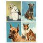 4 Tarjetas Postales Serie Perros