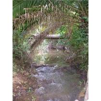 Terreno 25ha. Lote, Isla En Tigre, Delta.p/cabaña,country