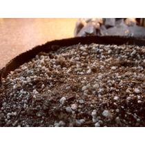 Sustrato Organico Para Cultivo Indoor / Outdoor X 20lts