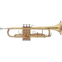 Trompeta Bb Stagg Profesional Con Estuche En Stock Y Cuotas