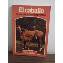 El Caballo - Enciclopedia Practica - W. H. Walter