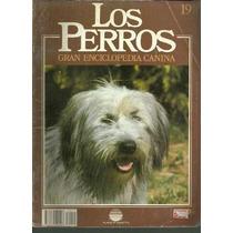 Enciclopedia Canina Perro Pastor Tatra Polaco Del Valle