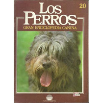 Enciclopedia Canina Perro Pastor Sierra De Aires Bouvier 20
