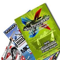 500 Flyers - Volantes - Folletos Full Color   10x15cm   24hs