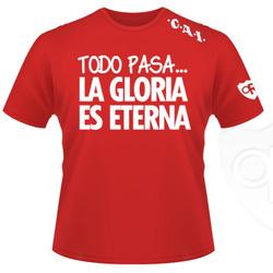 """Remeras Populares """"La gloria es ..."""