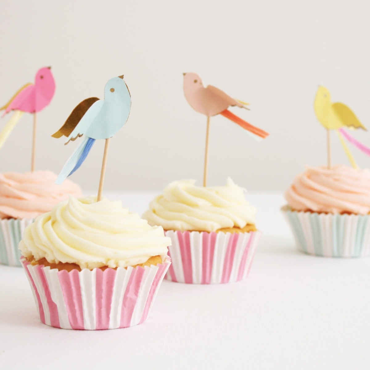 Cupcakes Kits Birdies