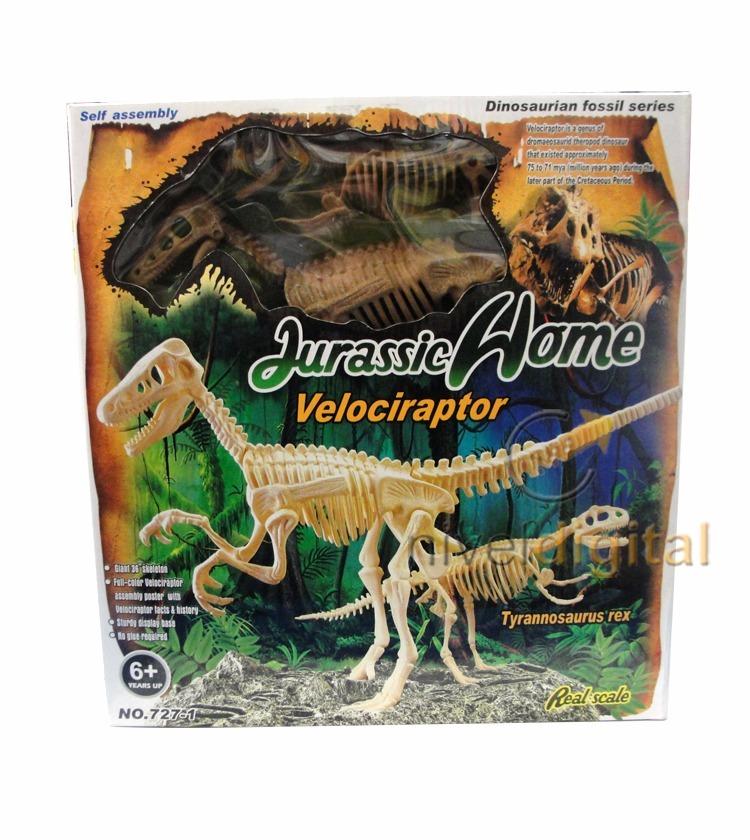 Set De 2 Esqueletos Dinosaurio Velocirraptor Paleontologia