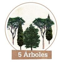 Plantar 5 Árboles