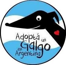 Adopta un Galgo en Argentina