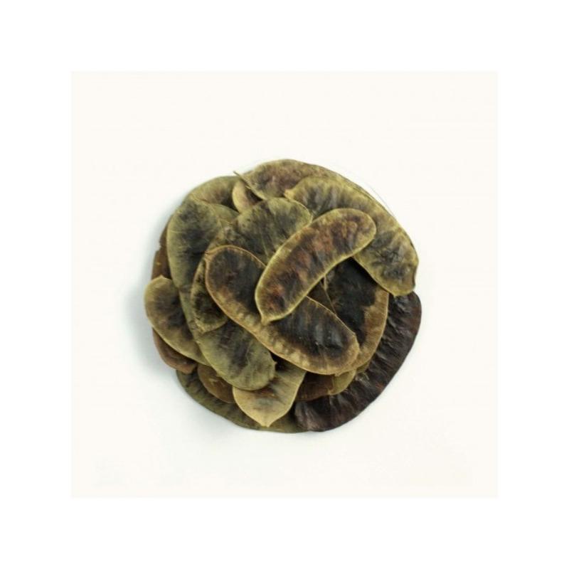 Cha em Folhas de Sene Foliculos - Kit 2 x 30g - DiCastro