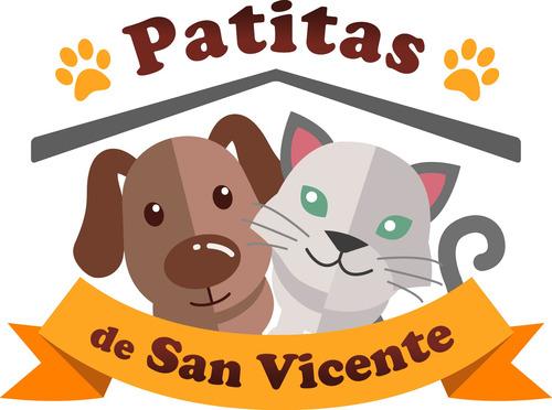Patitas de San Vicente