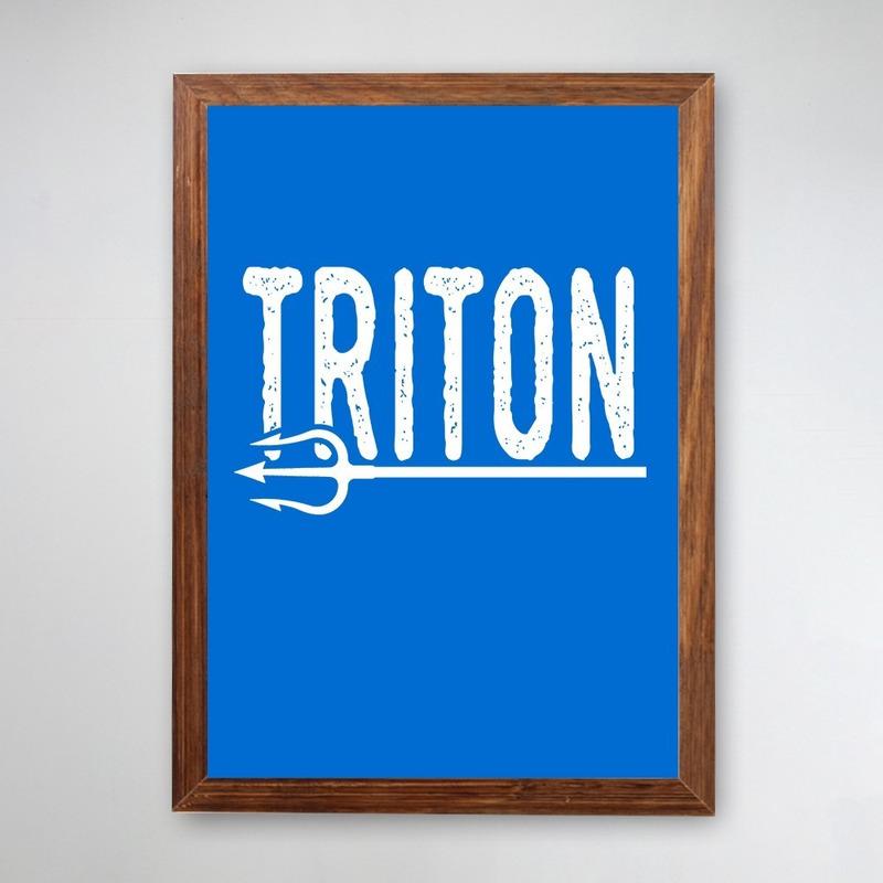 PÔSTER COM MOLDURA - TRITON