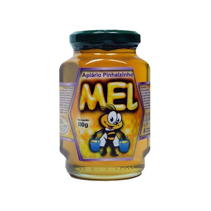 Mel Florada Silvestre com Assa-Peixe Pinhalzinho - 500g