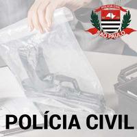 Curso Escrivão Polícia Civil SP Lógica