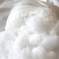Enchimento fibra siliconada 5kg