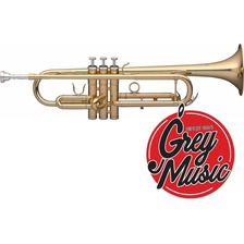Trompeta Stagg Ws Tr115 - Con Estuche Abs - Grey Music -