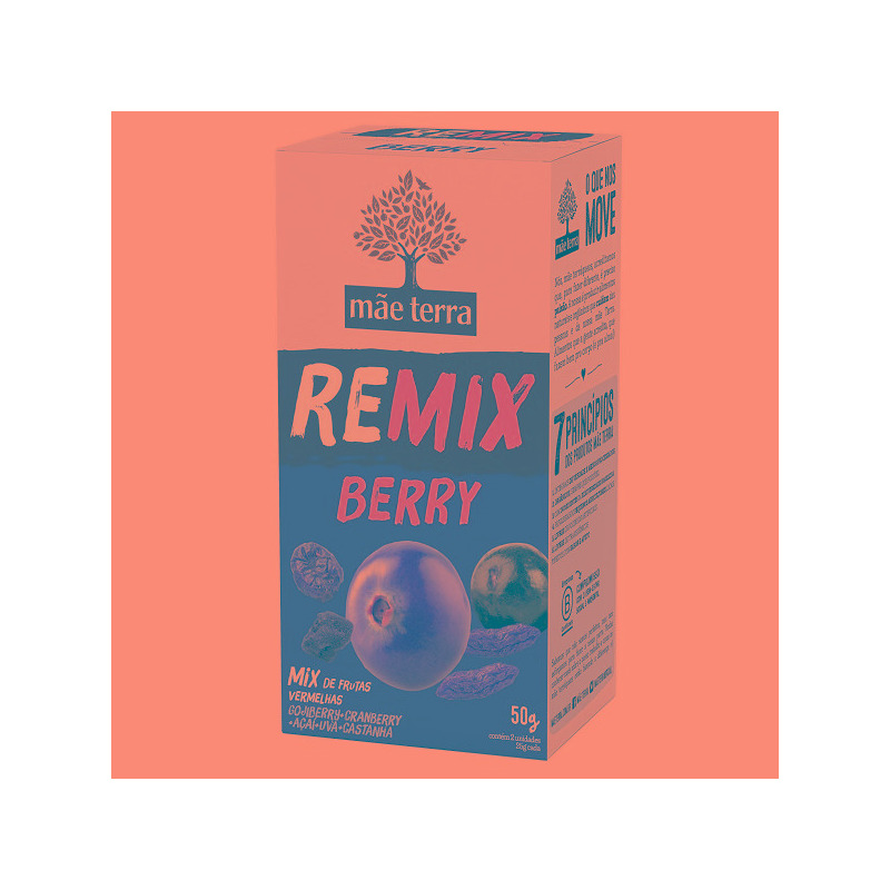 REMIX Berry (Frutas Vermelhas+Caju+Uva Passa)2x25g Mae Terra