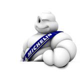 Caja Tubos Michelin 29 Piezas