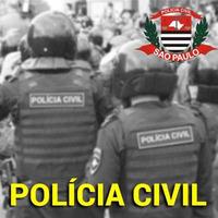 Curso Agente de Polícia Civil SP Noções de Direito