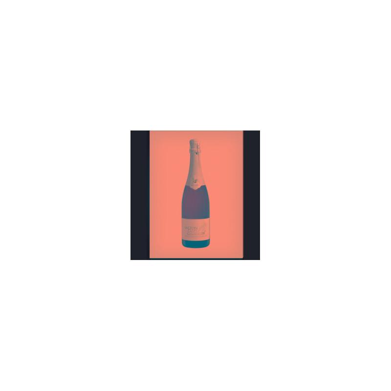 Espumante Moscatel 750ML - Salton