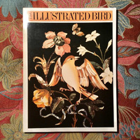 THE ILLUSTRATED BIRD.