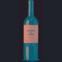Vinho Fino Merlot Casillero Del Diablo 750ml - Concha y Toro