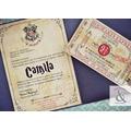 Invitación 15 años TQ054 (Harry Potter)