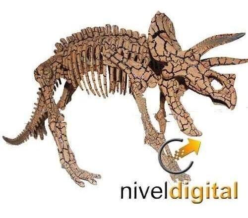 Esqueleto Dinosaurio En Caja Hueso Arqueologia Paleontologia