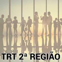 Revisão Avançada de Questões Analista Judiciário AJ TRT 2 SP Direito Processual Civil 2018