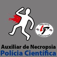 SPTC - Polícia Científica - Auxiliar de Necropsia - Noções de Direito