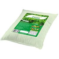 Farinha de Couve - 500g - Modulo Verde
