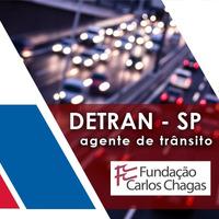 Curso Detran SP 2019 Agente de Trânsito Direito Constitucional
