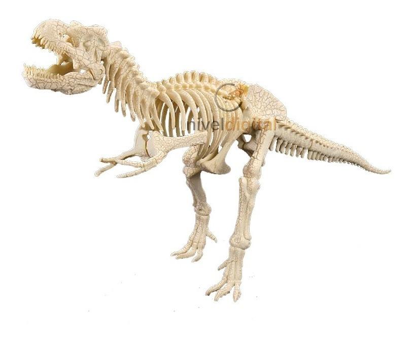Esqueleto Dinosaurio Tyrannosaurus Rex Grande En Caja