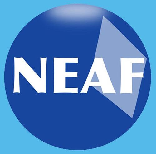 NEAF Concursos e Editora