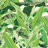 Tecido impermeável Acqua Soleil folhagem macuru verde cueva